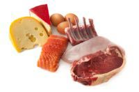 Low Carb/High Protein Diet