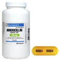 Amoxicillin Oral Antibiotic