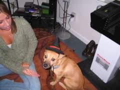 Here is my mutt, Stella