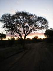 Sunrise: Malawi, Africa