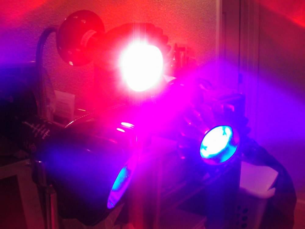 SciArt/Enlux Bulbs