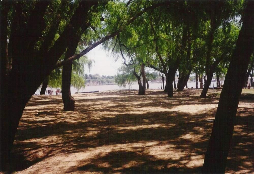 05 - River Paraná Islands - 03