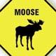pfmoose