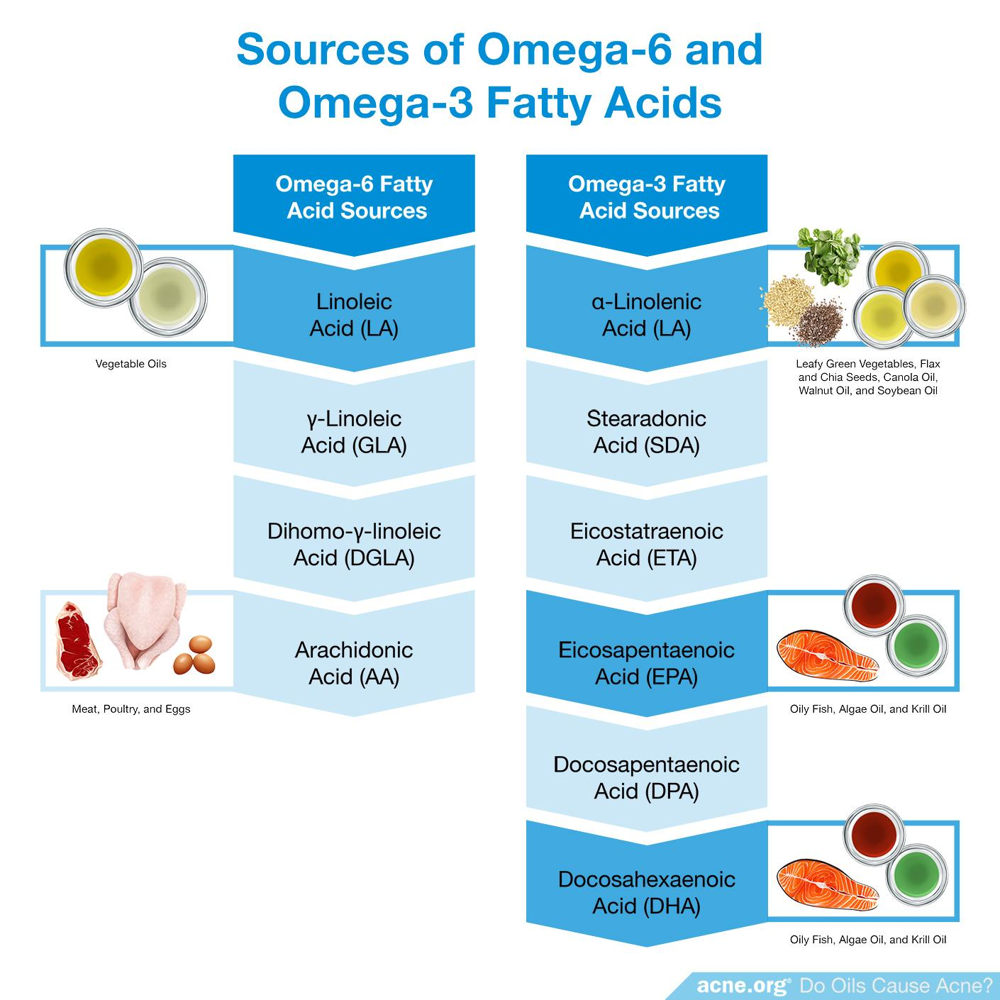 Sources of Omega-3 and Omega-6 Fatty Acids