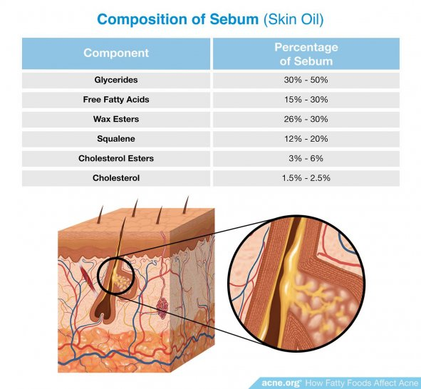 Composition of Sebum (Skin Oil)