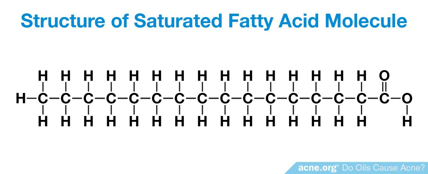 Structure of Saturated Fatty Acid Molecule