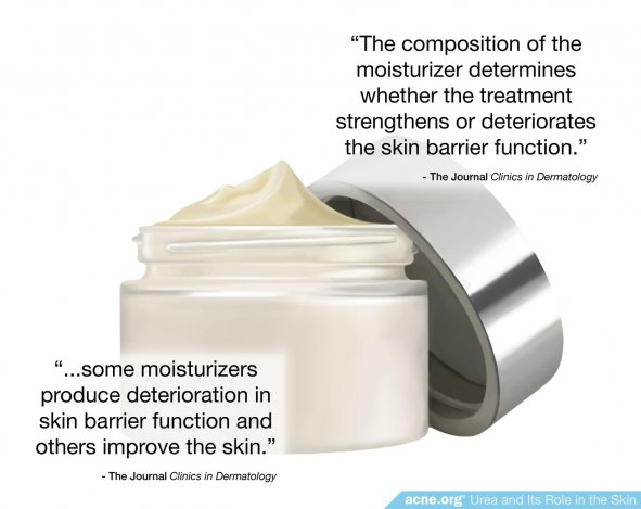 Moistrurizer and Skin Barrier Function