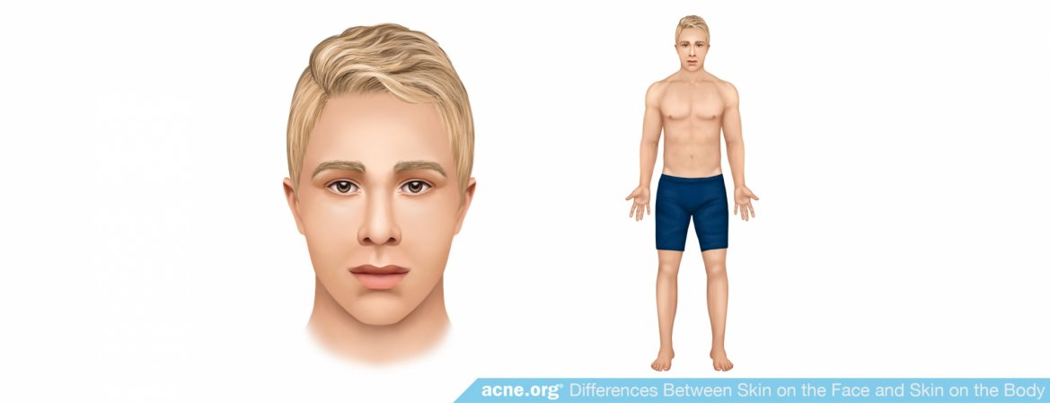 What Is the Difference Between Skin on the Face and Skin on the Body?