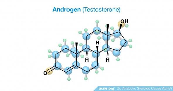 Androgen (Testosterone)