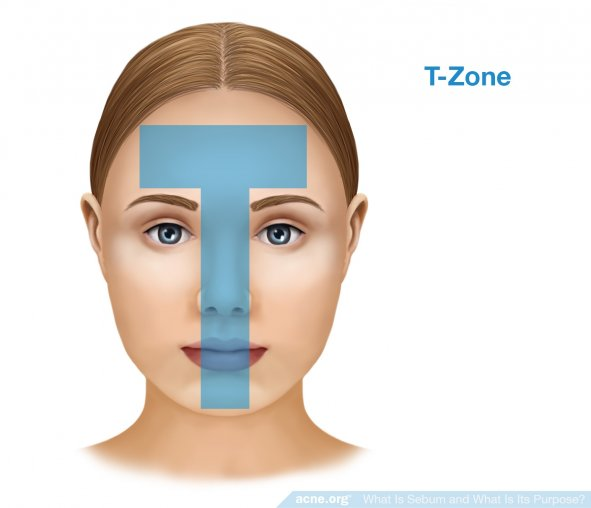Sebum and the T-zone