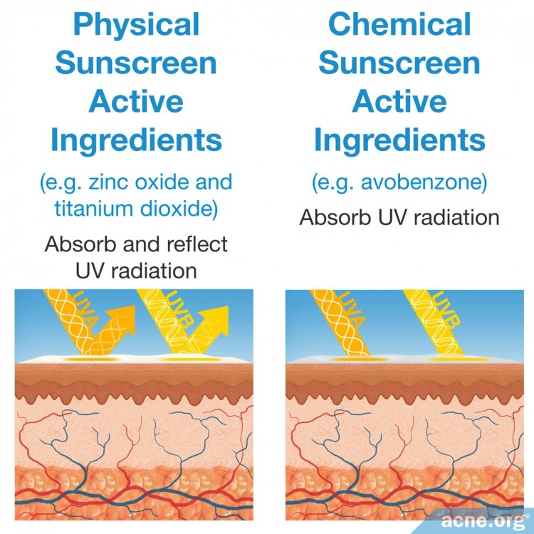 Active Ingredients in Physical and Chemical Sunscreens
