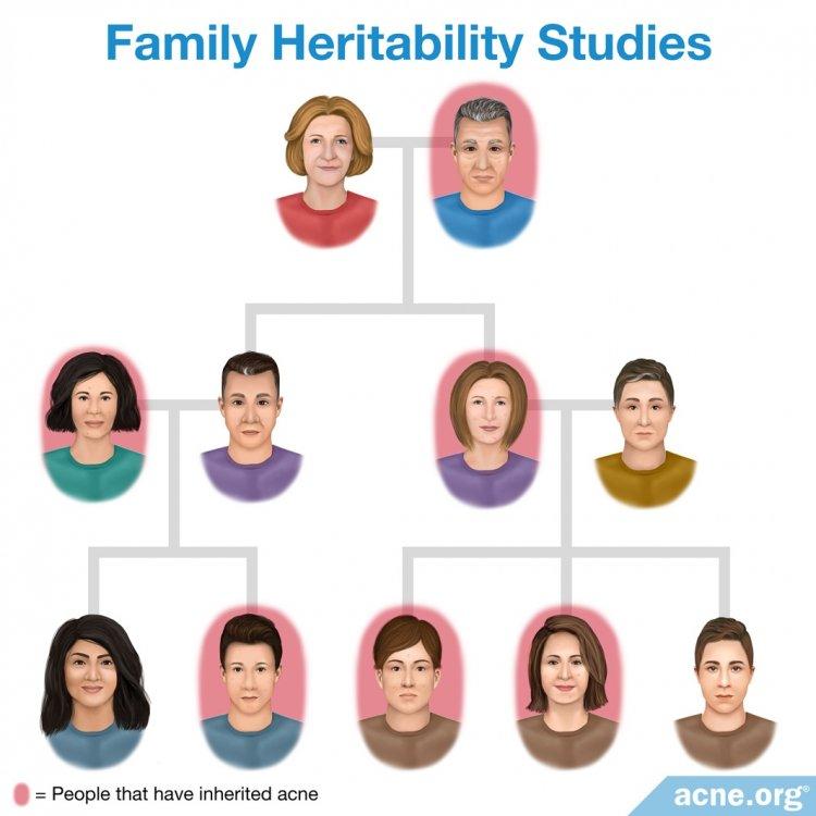 Family Heritability Studies