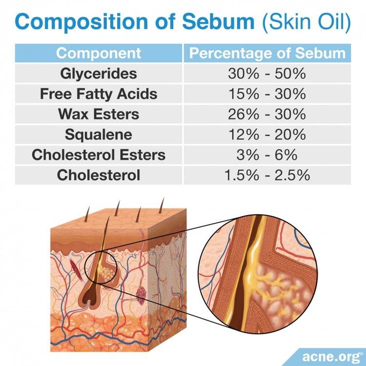 Composition of Sebum (Skin Oil)