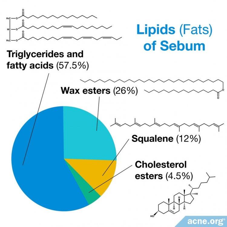 Lipids of Sebum