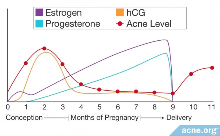 Graph Showing Hormone Levels During Pregnancy