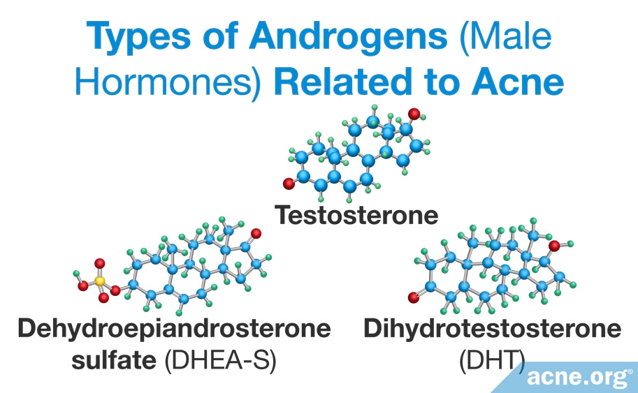 Types of Androgens Related to Acne