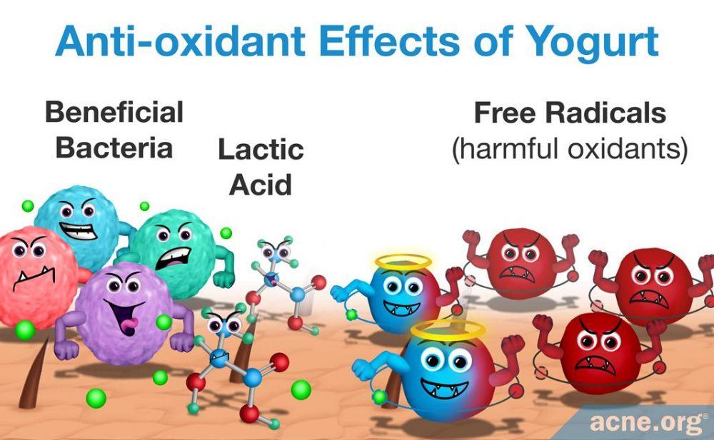 Anti-oxidant Effects of Yogurt
