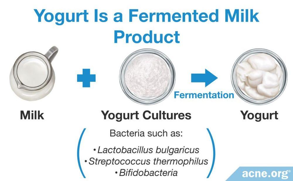 Yogurt Is a Fermented Milk Product