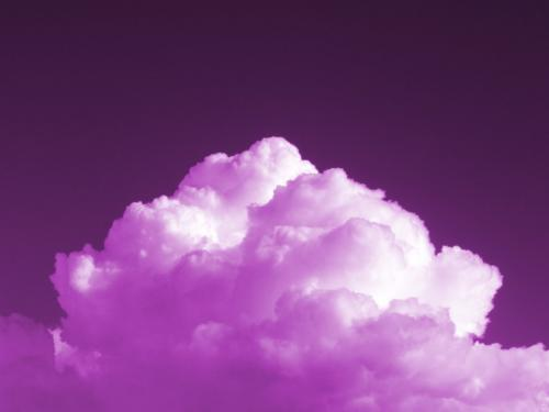 Purple*cloud's Photo