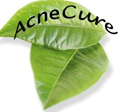 acnecure2015