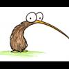 kiwi_kazoo